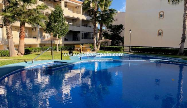 Apartment - Long Term Rental - Villamartin - Villamartín