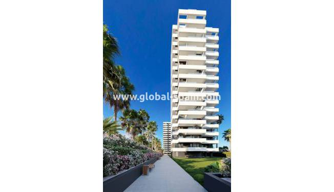 Appartement - Nouvelle construction - Calpe - Playa arenal-bol