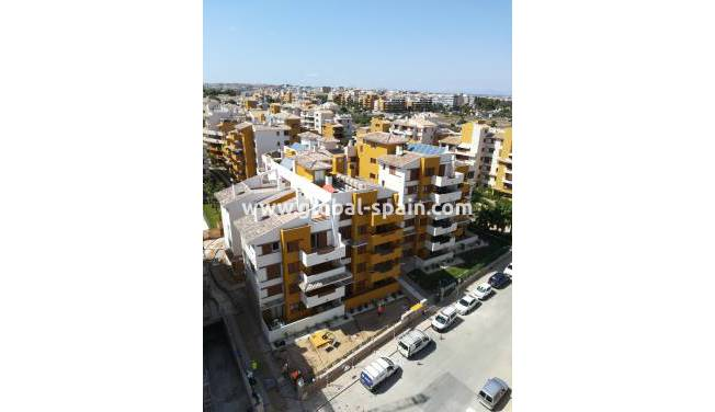 Appartement - Nouvelle construction - Punta prima - Punta Prima